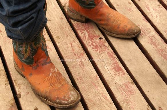 Clints boots