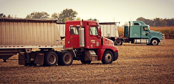 Harvest Semis