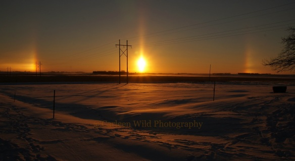 South Dakota Sun Dogs