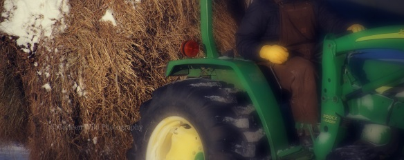Moving a bale